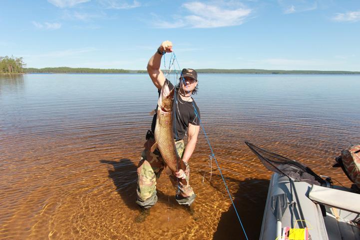 как ловить дикую форель в озере